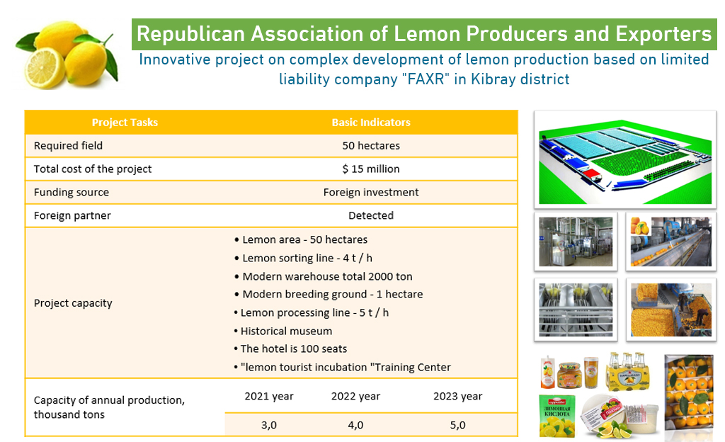 Innovative project on complex development of lemon production