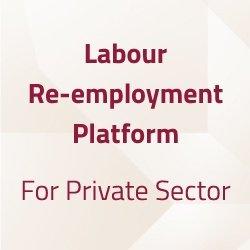 Employment 001
