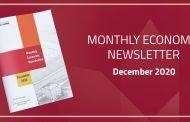 Monthly Economic Newsletter | December 2020